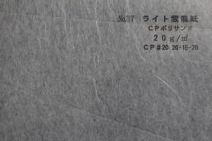 p14 ライト雲龍20g CPポリサンド
