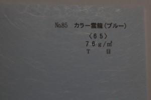 p39 カラー雲龍(ブルー)